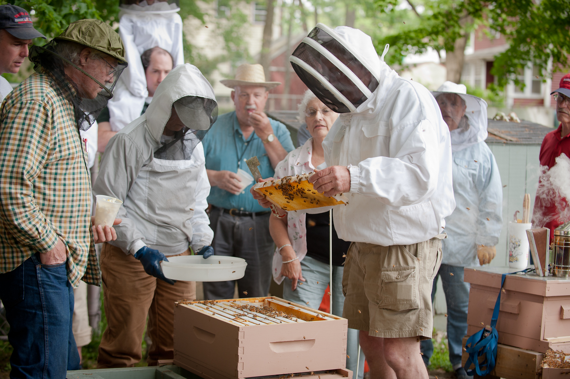 outdoor meetings and hive openings in Middlesex County