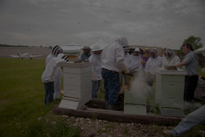 hive openings are part of our ongoing continuing education opportunities